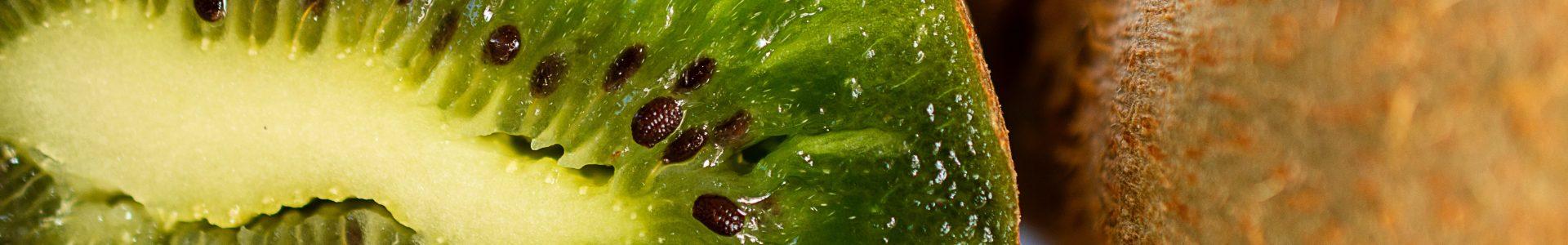 Corona Virus – jetzt geht es um Ihr Immunsystem!
